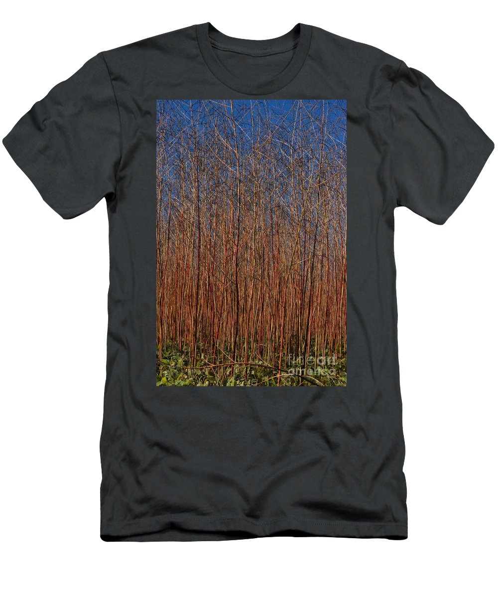 On The Farm Men's T-Shirt (Athletic Fit) featuring the photograph Orchard by Donna Bentley