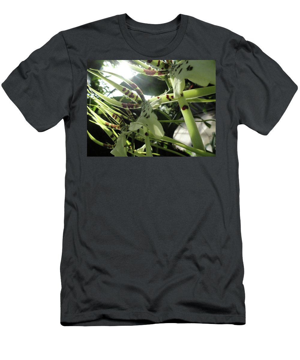 Orchid Men's T-Shirt (Athletic Fit) featuring the photograph Orchid Lumin by Trish Hale