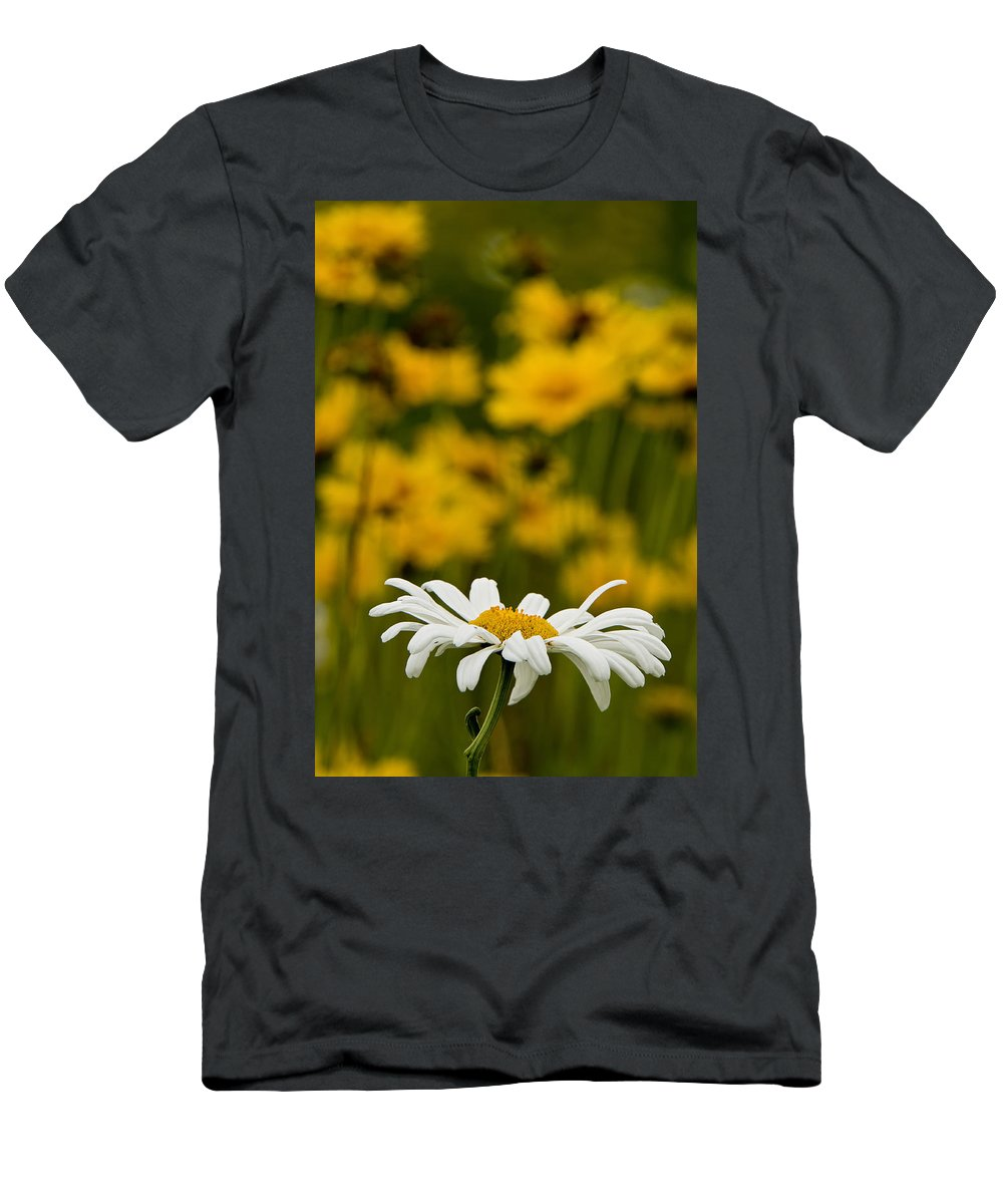 Ox Eyed Daisy Men's T-Shirt (Athletic Fit) featuring the photograph Ox Eyed Daisy 2 by Michael Cummings