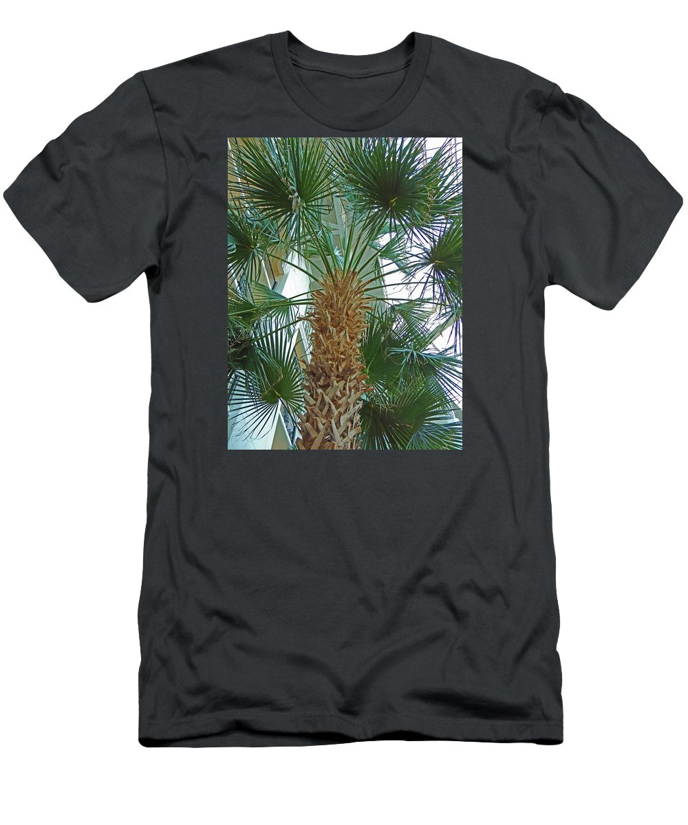 Photographic Print Men's T-Shirt (Athletic Fit) featuring the photograph Palm Tree by Marian Bell