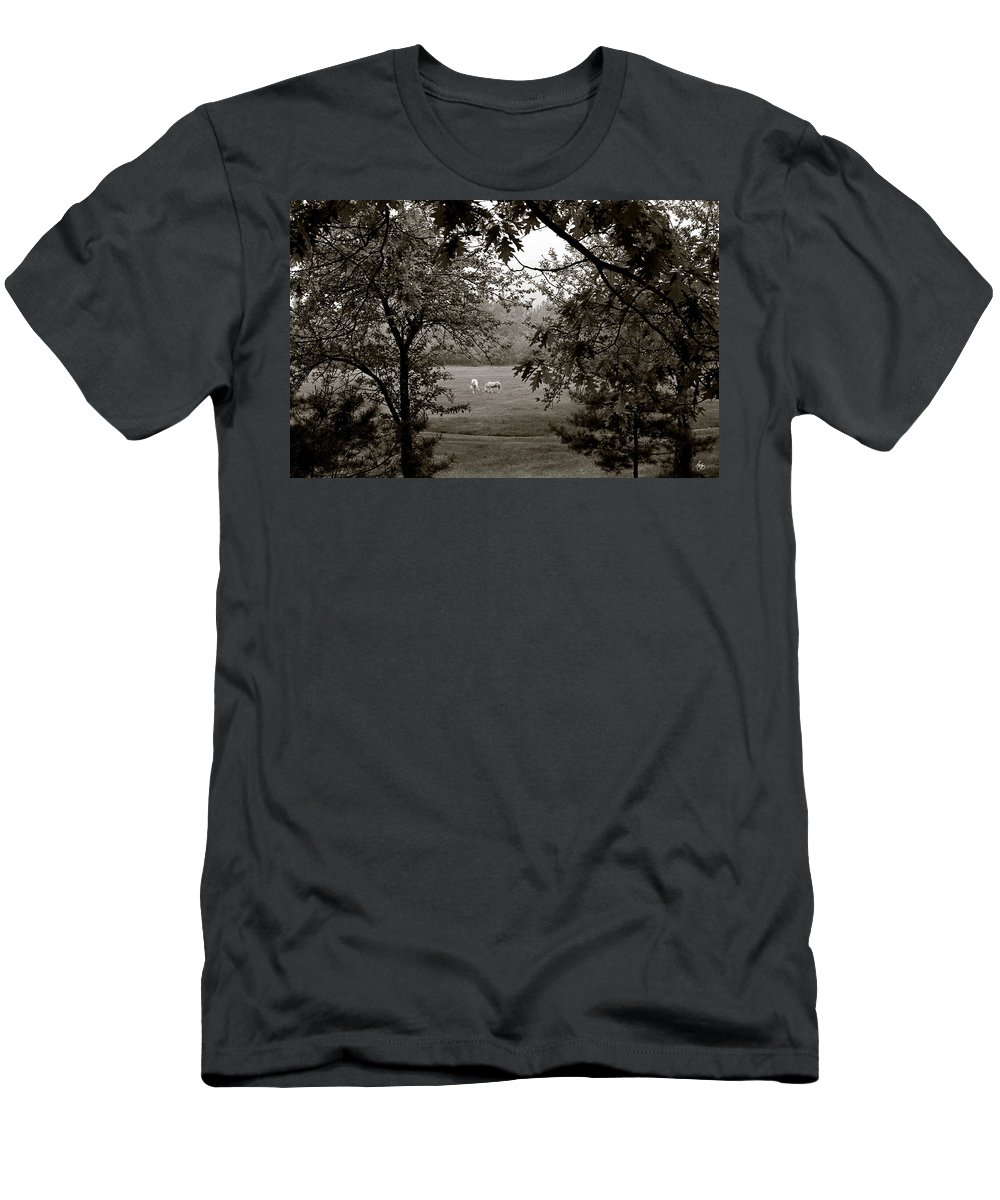 Red Men's T-Shirt (Athletic Fit) featuring the photograph Palominos Framed In Oak by Wayne King