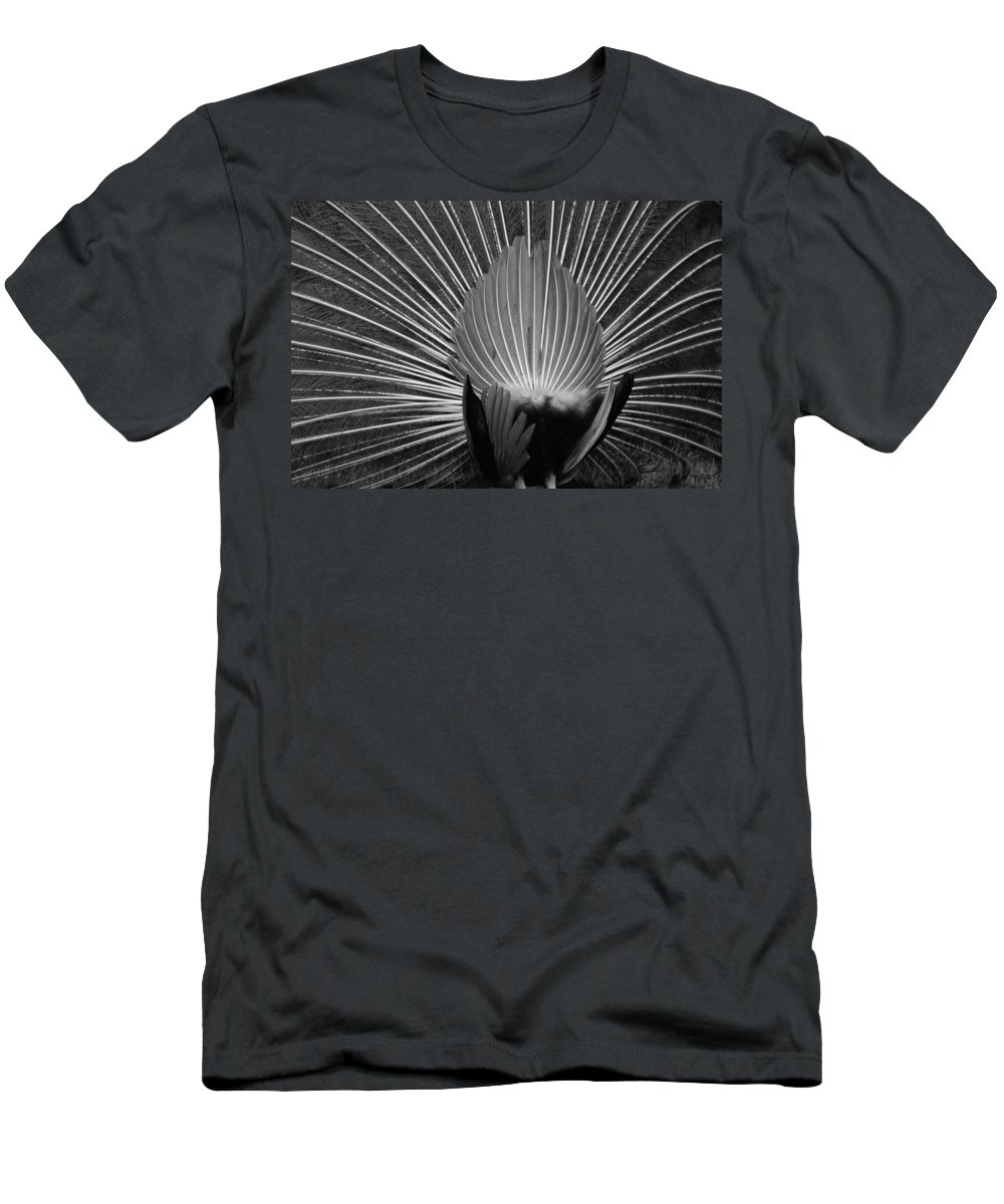Macro Men's T-Shirt (Athletic Fit) featuring the photograph Peacocks Ass Original by Rob Hans