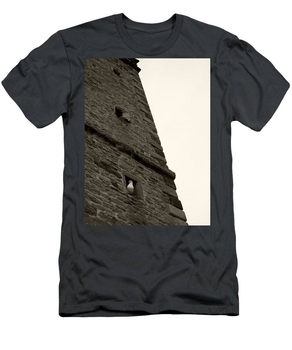 2011 Men's T-Shirt (Athletic Fit) featuring the photograph Peek-a-boo Pigeon by Julia Raddatz