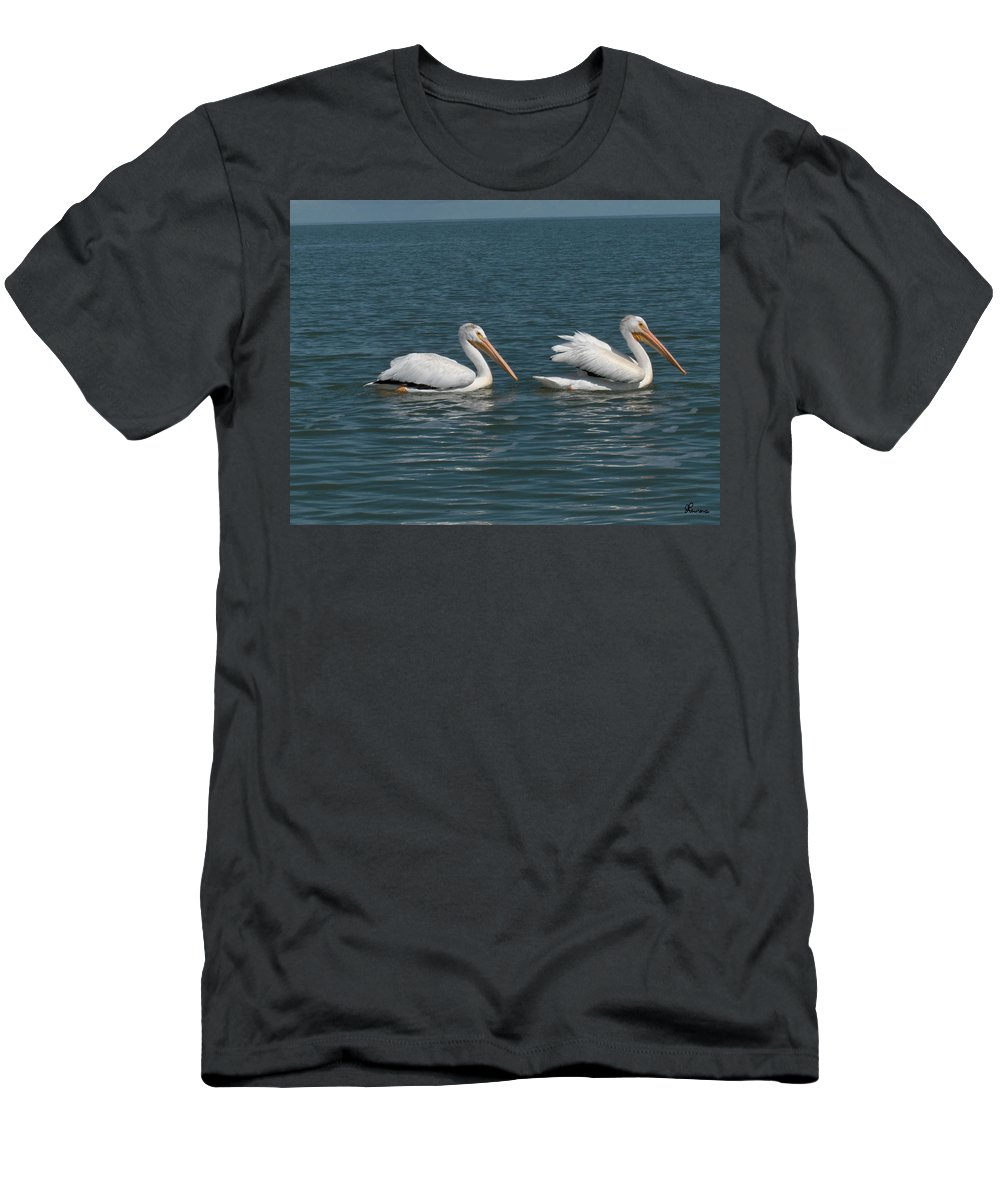 Wild Animals Birds Nature Lake Water Pelicans Men's T-Shirt (Athletic Fit) featuring the photograph Pelicans by Andrea Lawrence