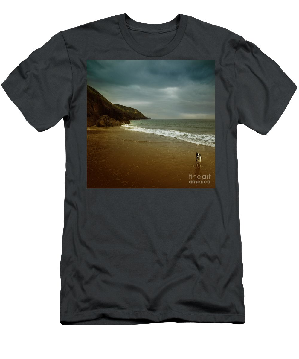 Beach Men's T-Shirt (Athletic Fit) featuring the photograph Pembrokeshire by Angel Ciesniarska