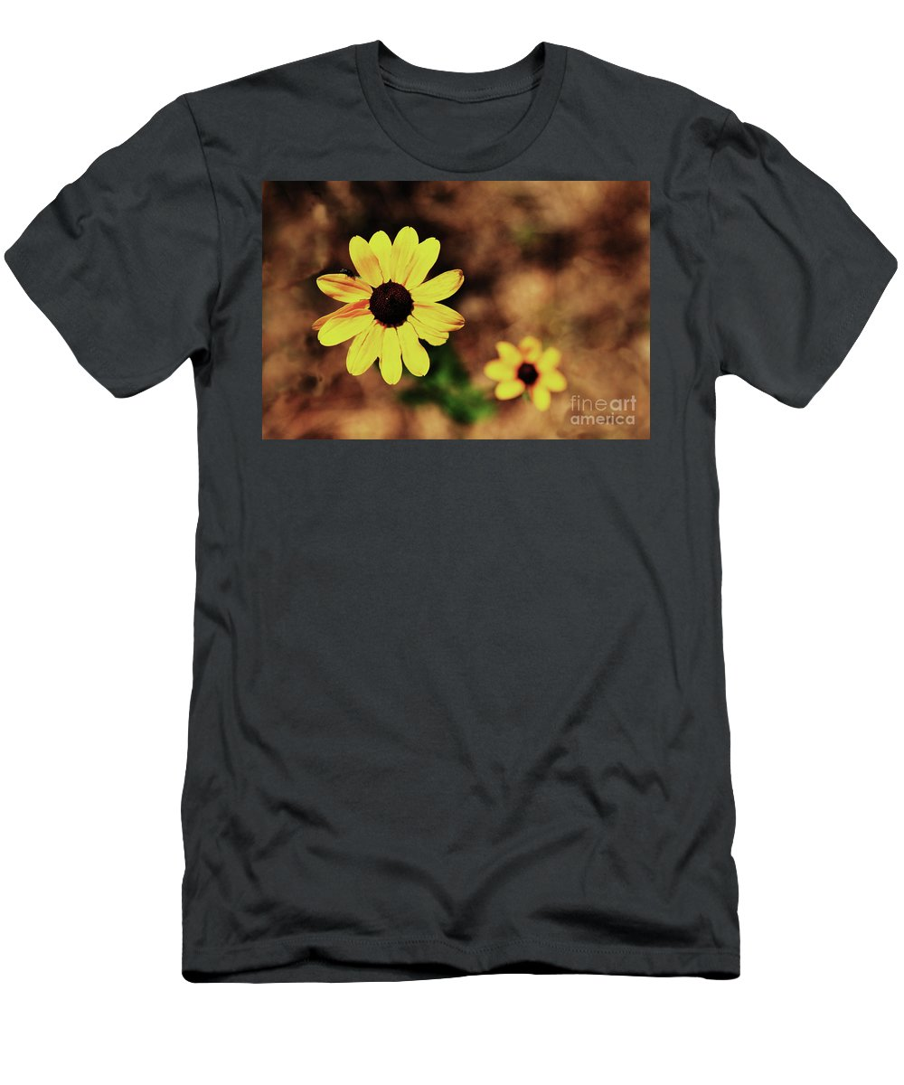 Sunflower T-Shirt featuring the photograph Petals Stretched by Kim Henderson