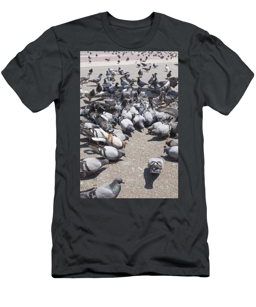 Vadim Goodwill Men's T-Shirt (Athletic Fit) featuring the photograph Pigeons Are Eating Forage by Vadim Goodwill