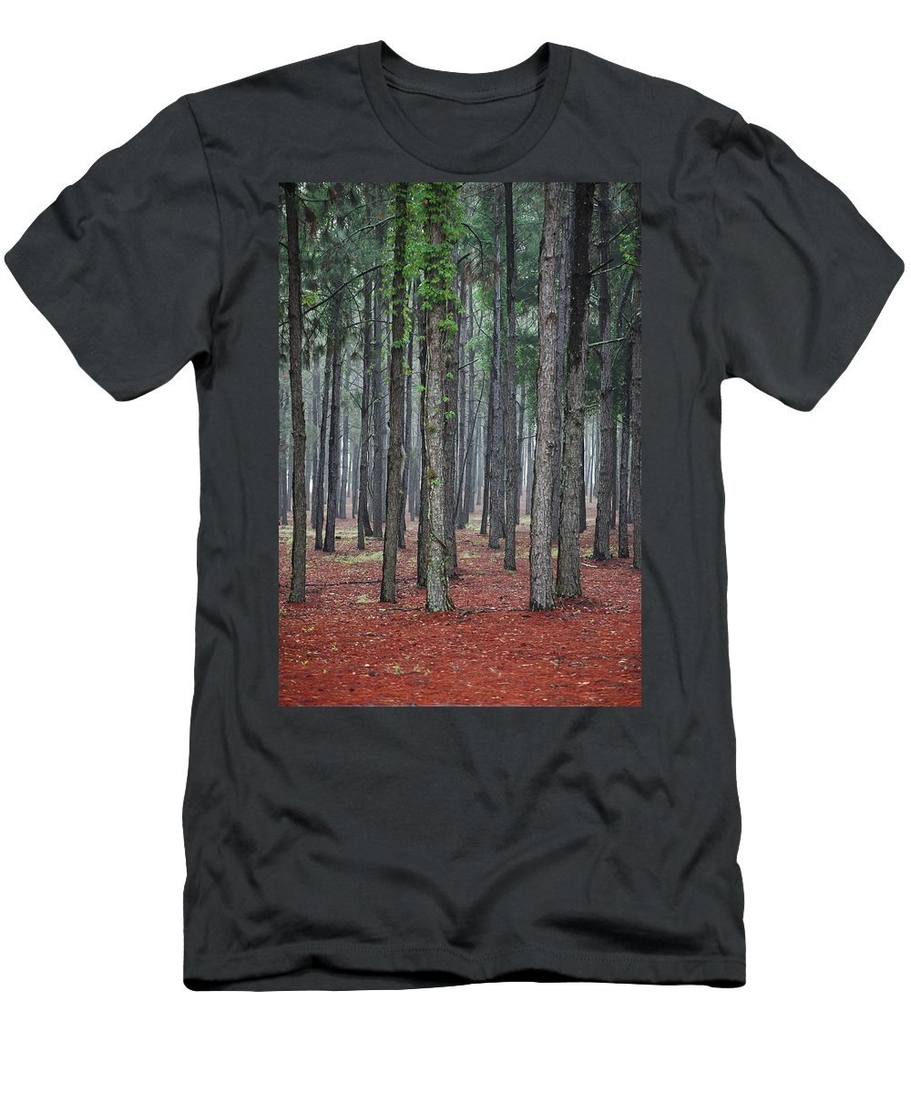 Pine Trees Men's T-Shirt (Athletic Fit) featuring the photograph Pine Trees by Robert Meanor
