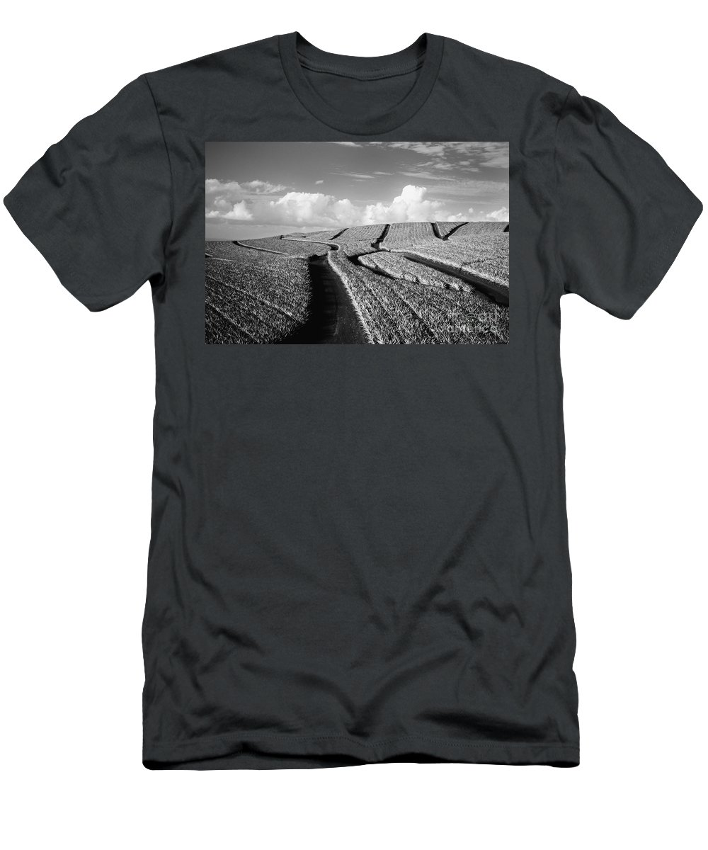 Abstract Men's T-Shirt (Athletic Fit) featuring the photograph Pineapple Field - Bw by Dana Edmunds - Printscapes