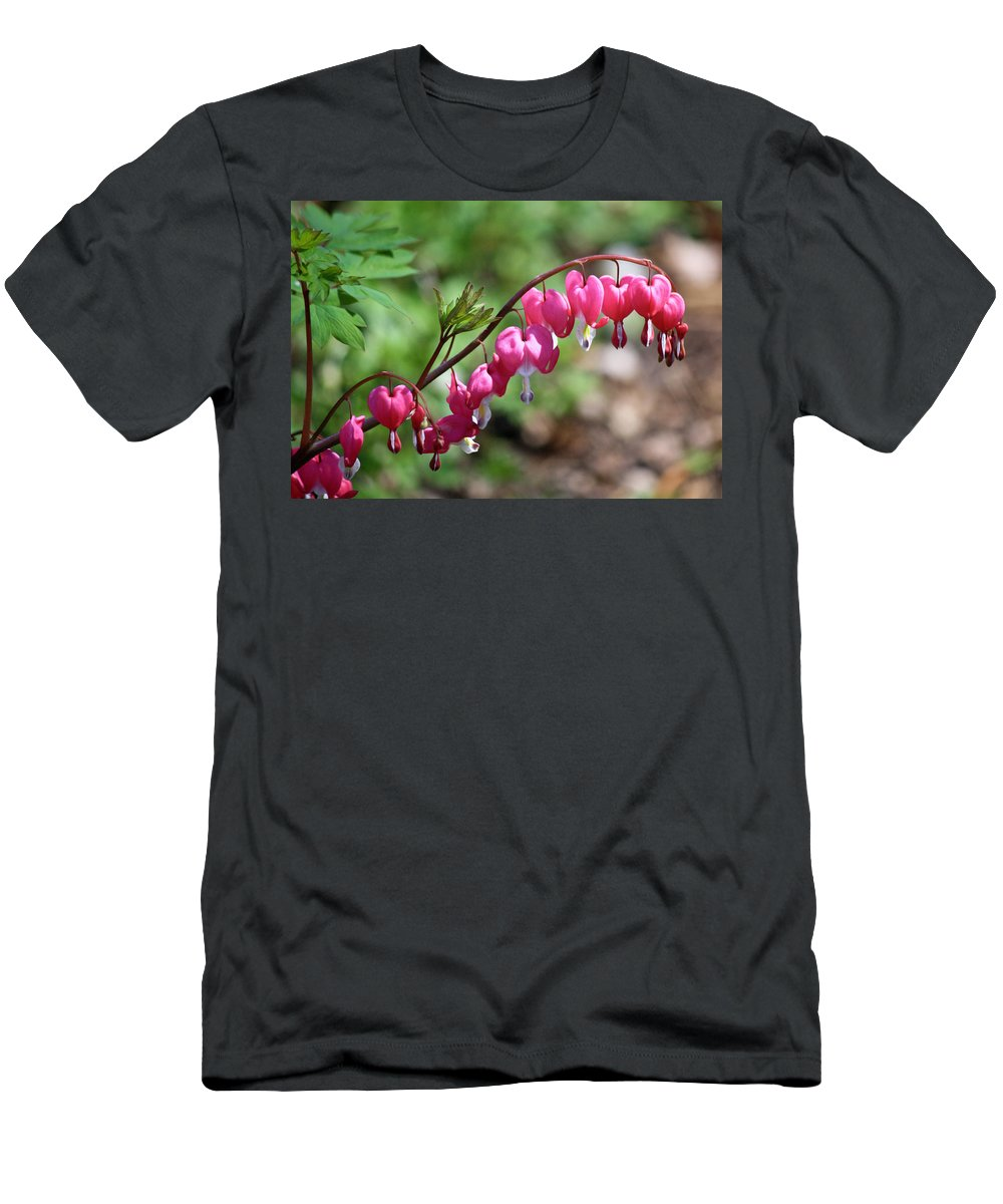 Lamprocapnos Spectabilis Men's T-Shirt (Athletic Fit) featuring the photograph Pink Bleeding Hearts 1 by Teresa Mucha
