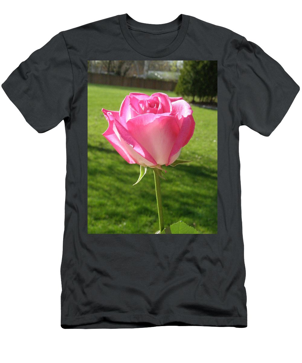 Pink Men's T-Shirt (Athletic Fit) featuring the photograph Pink Rose In The Sunlight by Alice Markham