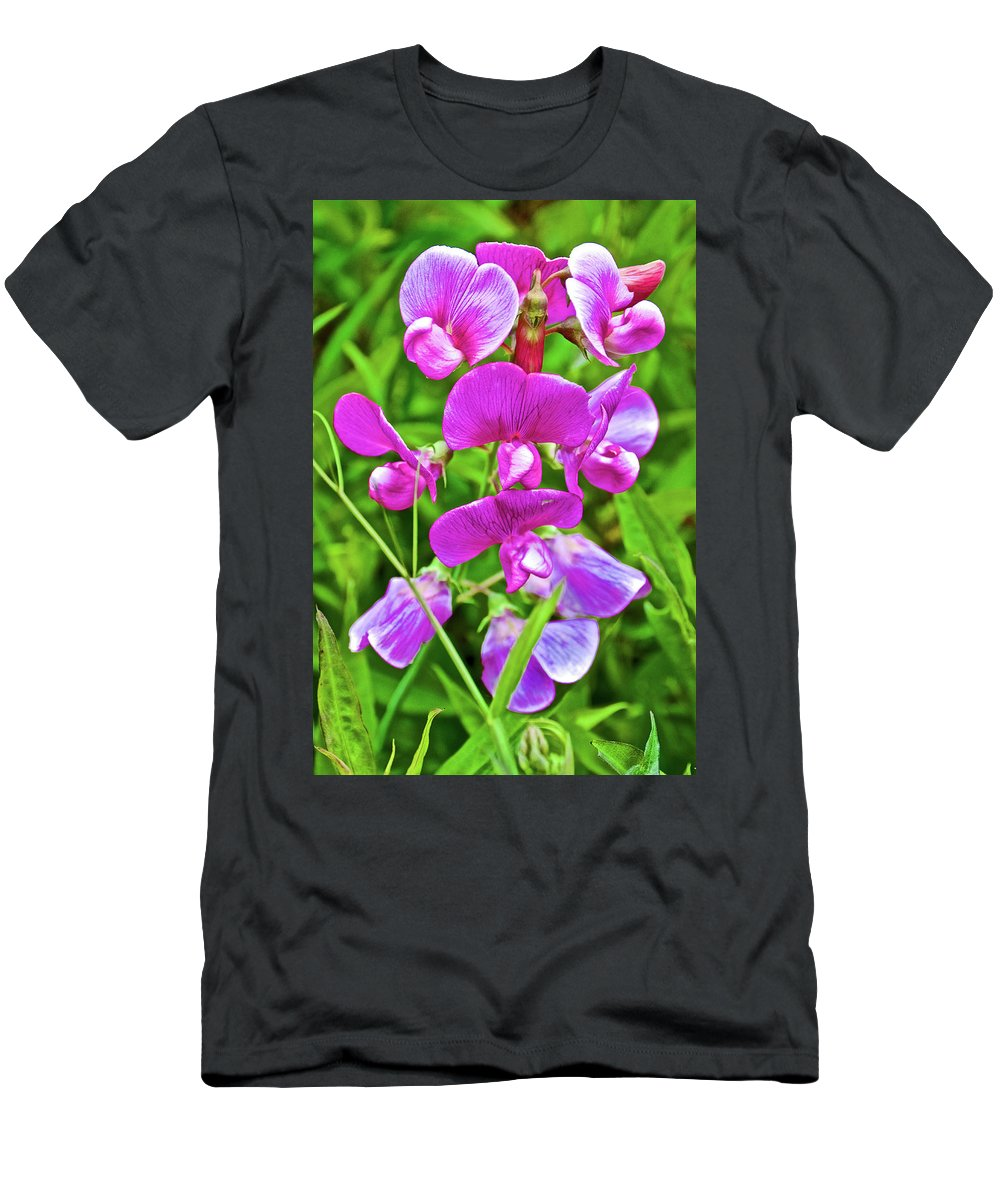 Pink Sweet Peas In Huntington Gardens In San Marino Men's T-Shirt (Athletic Fit) featuring the photograph Pink Sweet Peas In Huntington Gardens In San Marino-california by Ruth Hager