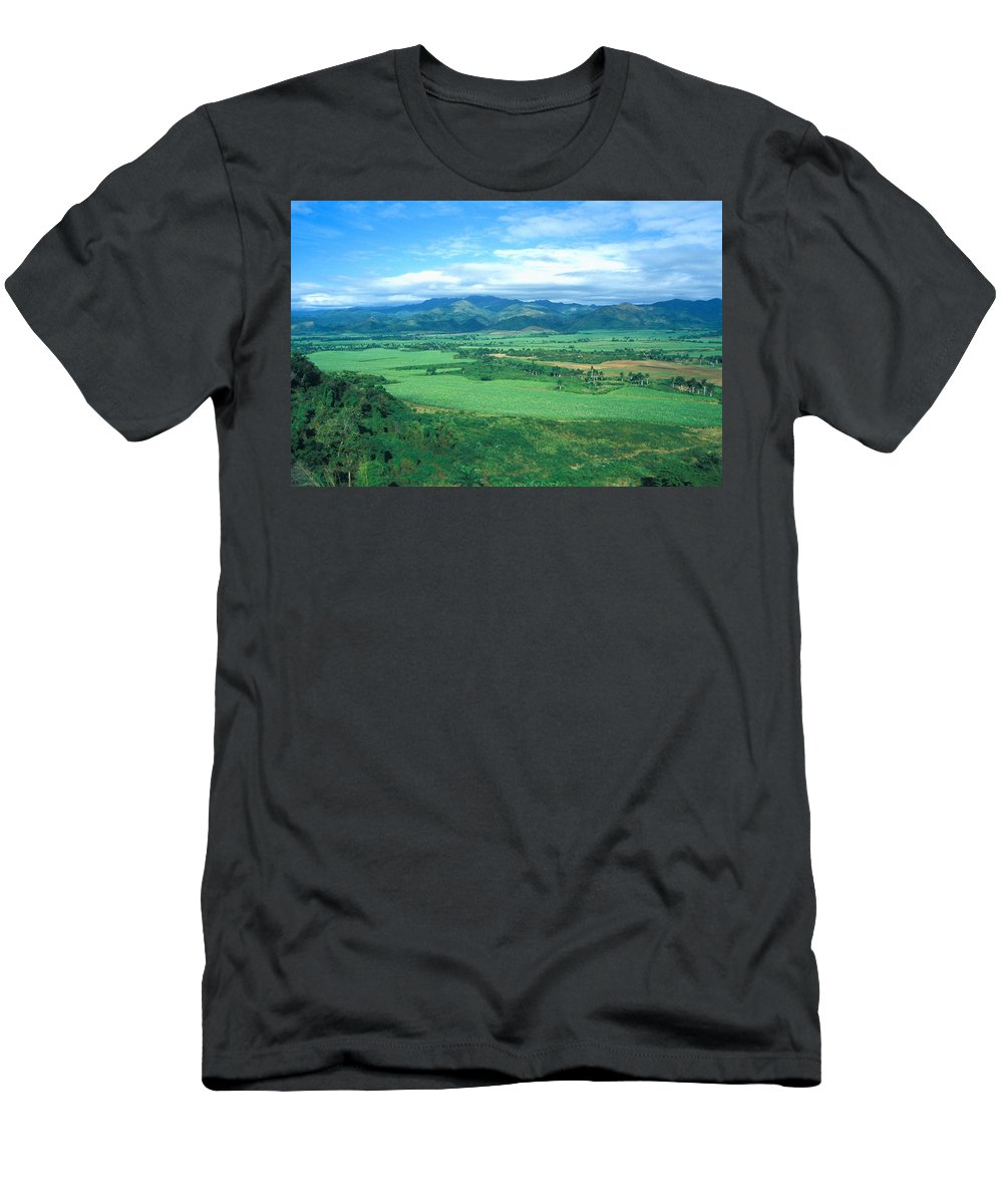 Sugar Cane Men's T-Shirt (Athletic Fit) featuring the photograph Plantation by Ralf Kaiser