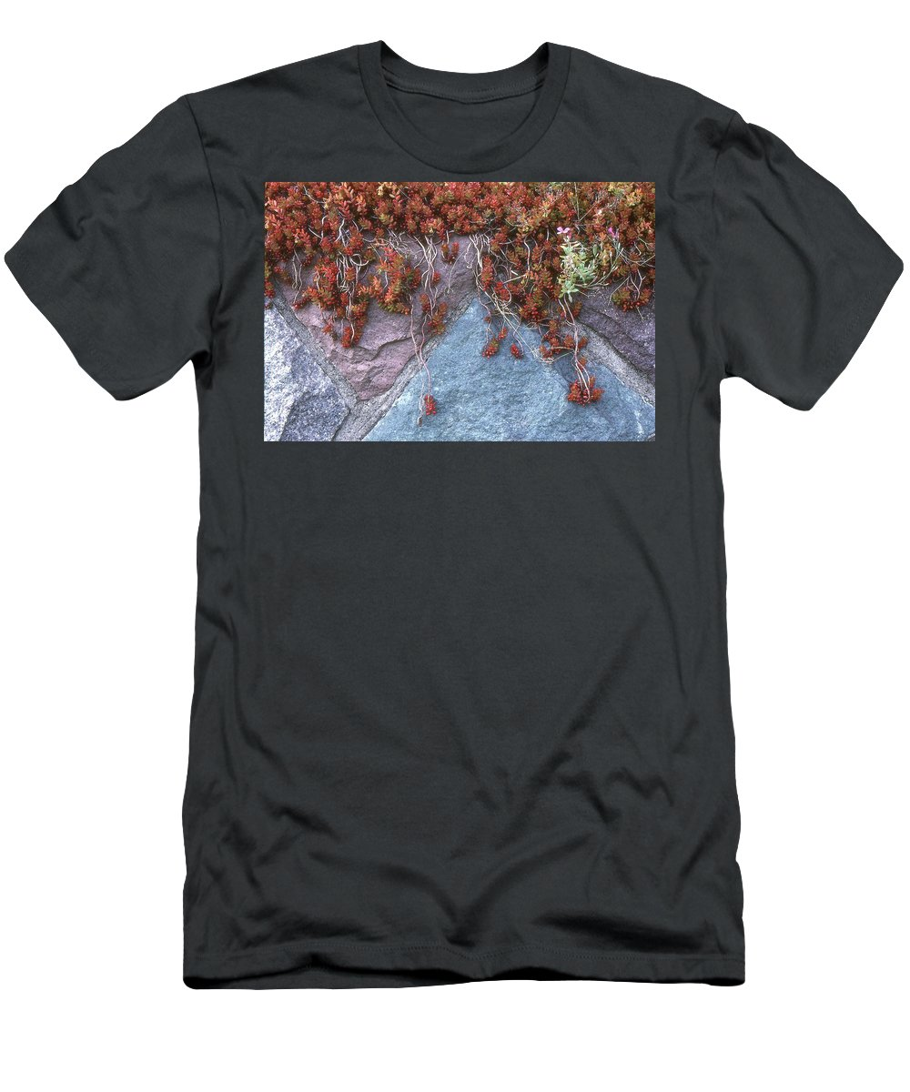 Abstract Men's T-Shirt (Athletic Fit) featuring the photograph Plants On The Rock Two by Lyle Crump