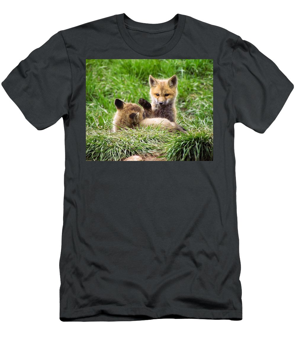 Red Fox Men's T-Shirt (Athletic Fit) featuring the photograph Play With Me by LeAnne Perry