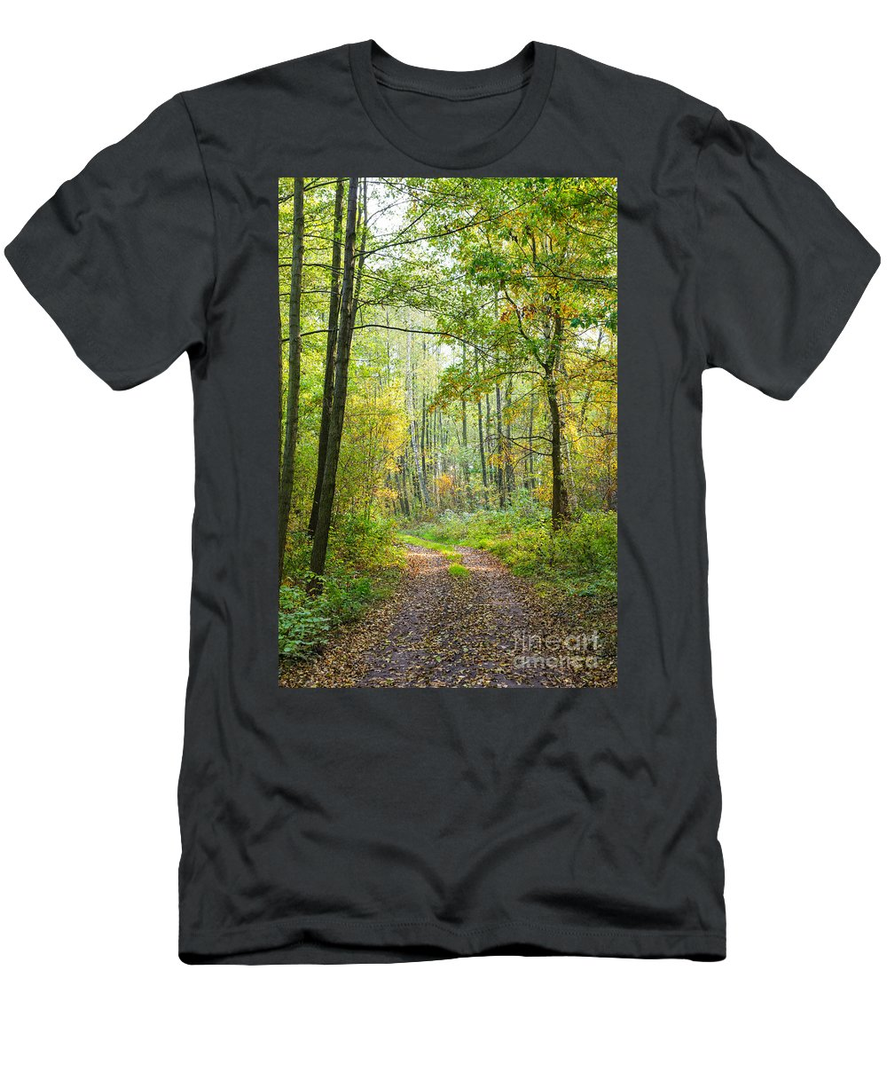 Beautiful Picturesque Background Flora Wallpaper Parks Forests Woods Countryside Vegetation Empty Pathway Path Track Tracks Autumn Fall Woodland Forest Landscape Polish Poland Europe European View Travel Tourism Mazovia Masovian Green Greenery Public Scenery Scene Scenic Colors Colours Colourful Colorful Autumnal Tree Trees Light Sunlight Foliage Conservation Leaves Environmental Seasonal Season Wood Growth Plants Natural Nature Environment Forestry Reserve Men's T-Shirt (Athletic Fit) featuring the photograph Polish Forest 2 by Marcin Rogozinski