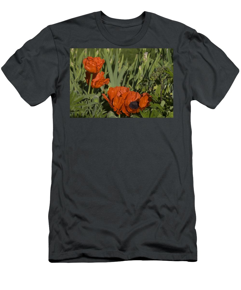 Poppy Men's T-Shirt (Athletic Fit) featuring the photograph Poppies 1 by Sara Stevenson