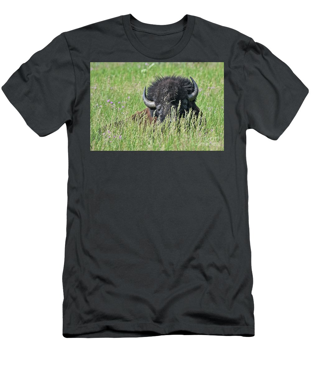 Wild Life Men's T-Shirt (Athletic Fit) featuring the photograph Portrait Of A Bison by Franco Valentini