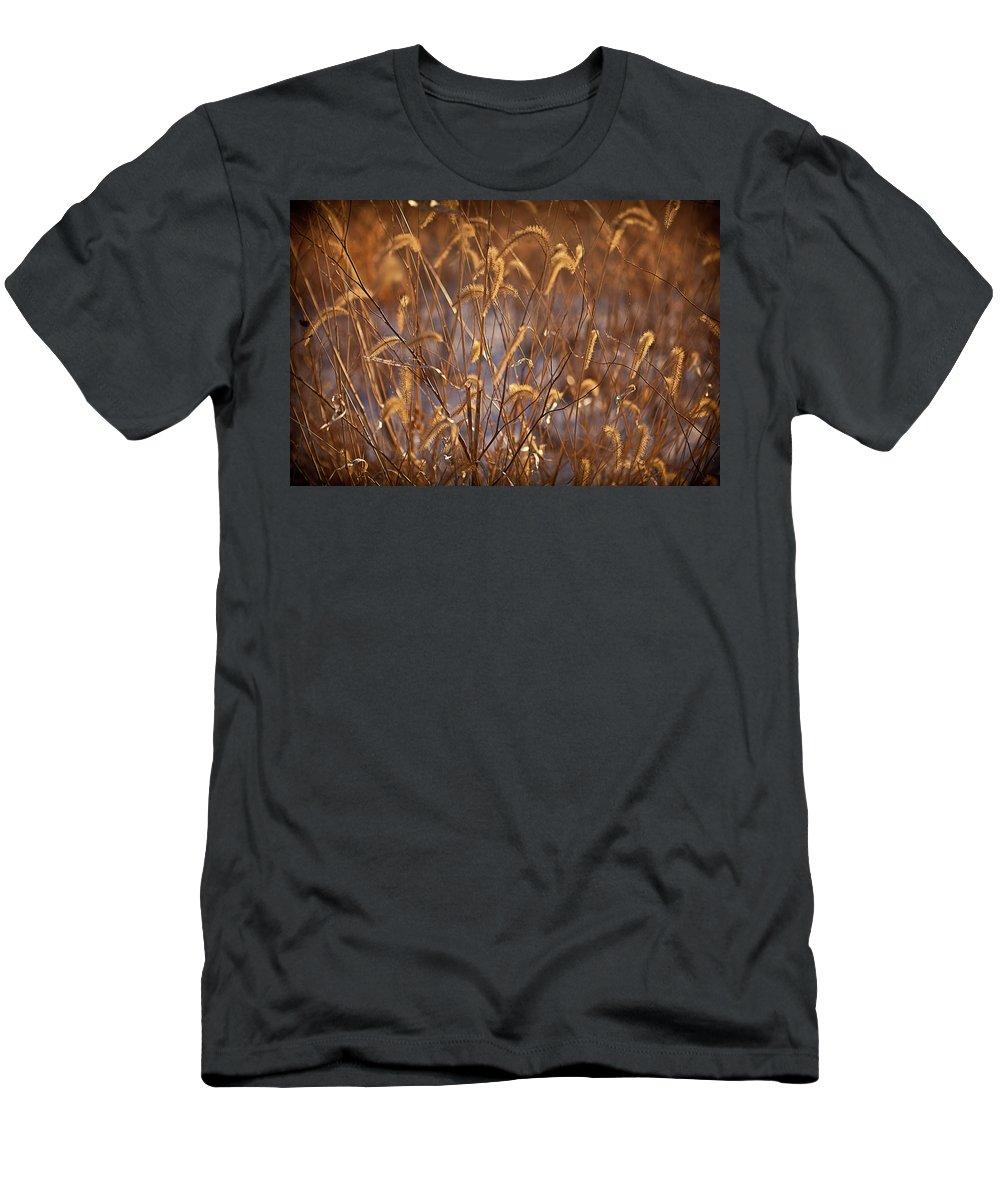 Midewin Men's T-Shirt (Athletic Fit) featuring the photograph Prairie Grass Blades by Steve Gadomski