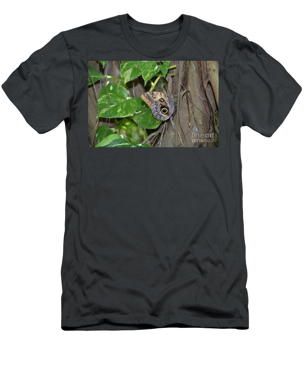 Blue Morpho Men's T-Shirt (Athletic Fit) featuring the photograph Pretty Morpho Butterfly Resting In A Butterfly Garden by DejaVu Designs