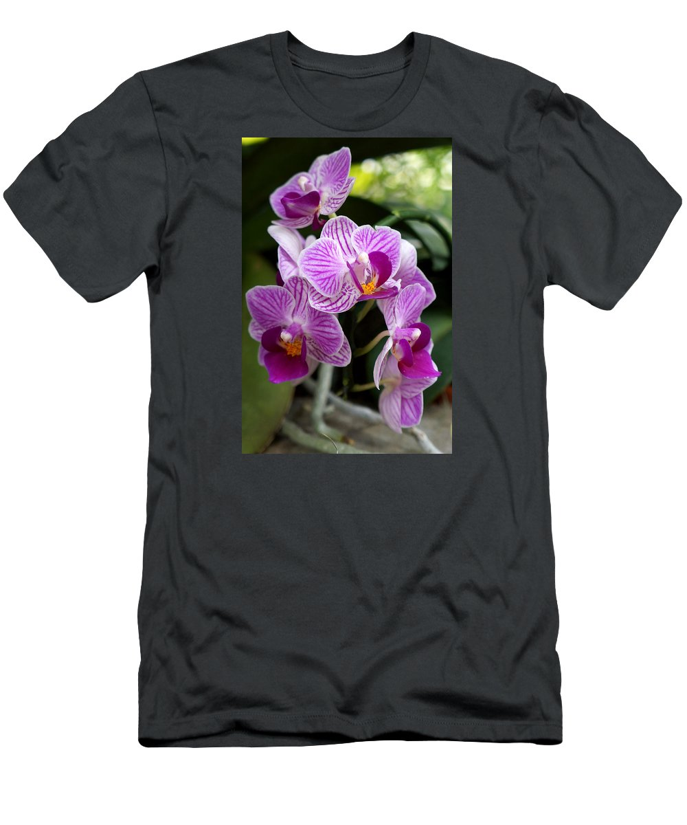 Ann Keisling Men's T-Shirt (Athletic Fit) featuring the photograph Pretty Purple And White by Ann Keisling