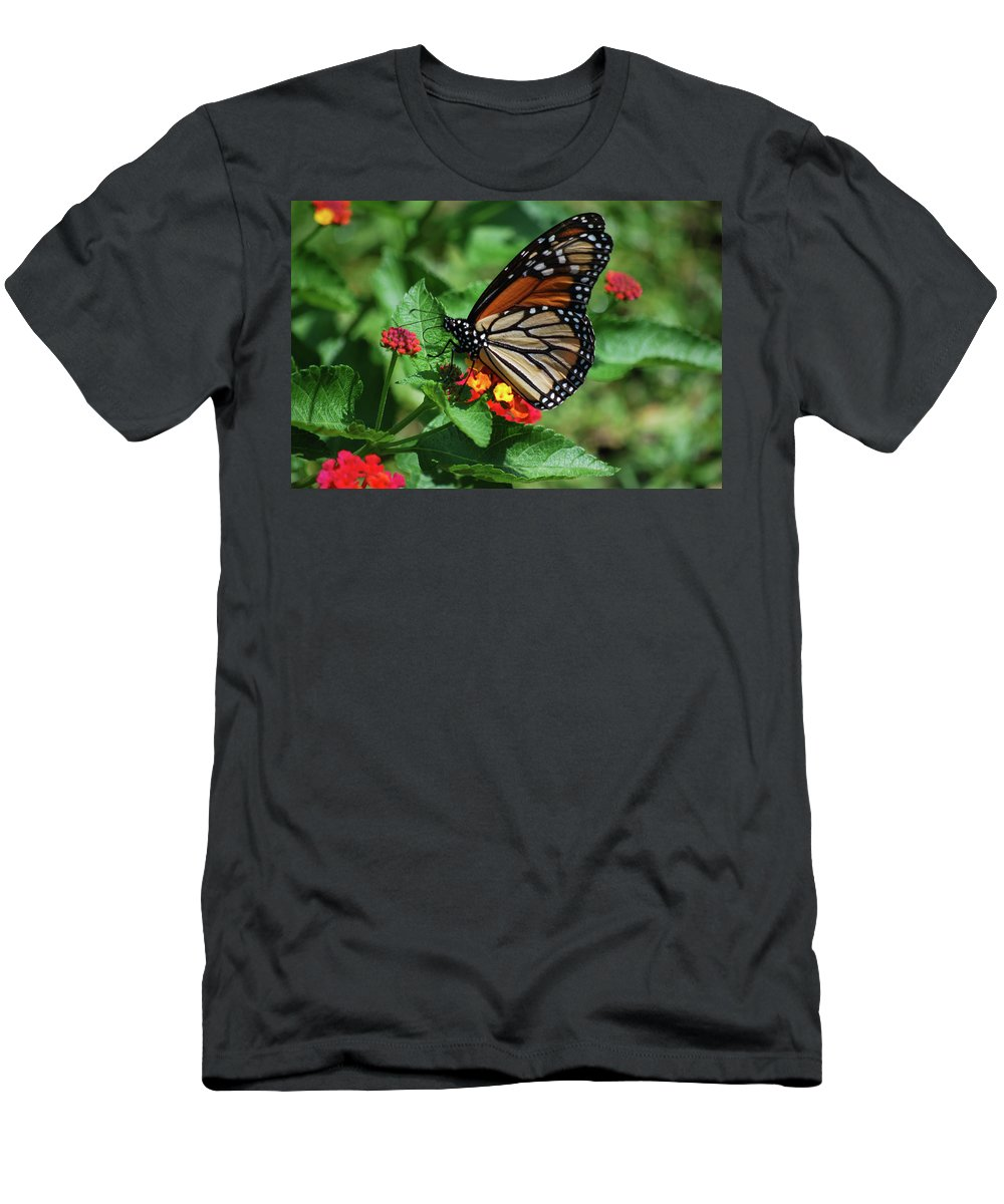 Monarch Men's T-Shirt (Athletic Fit) featuring the photograph Pretty Spots by Lori Tambakis