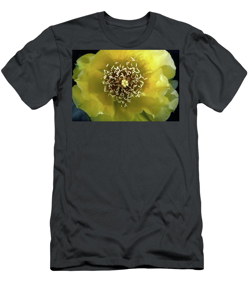 Prickly Pear Cactus Flower Close-up Men's T-Shirt (Athletic Fit) featuring the photograph Prickly Pear Cactus Flower by Sally Weigand