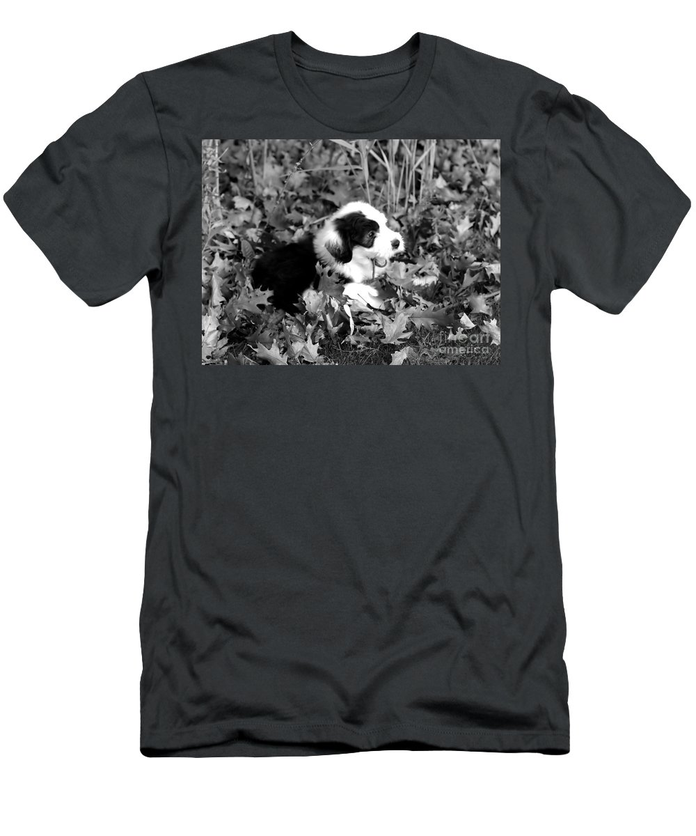 Old Men's T-Shirt (Athletic Fit) featuring the photograph Puppy In The Leaves by Kathleen Struckle