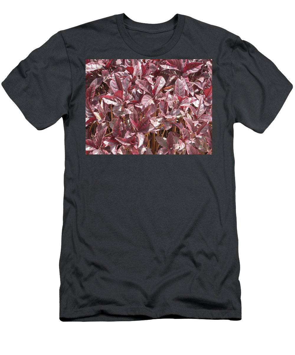 Purple Men's T-Shirt (Athletic Fit) featuring the photograph Purple Foliage by Usha Shantharam