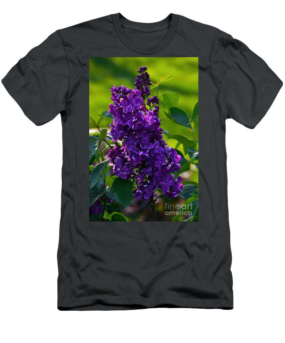 Syringa Vulgaris Men's T-Shirt (Athletic Fit) featuring the photograph Purple French Lilac by Catherine Sherman