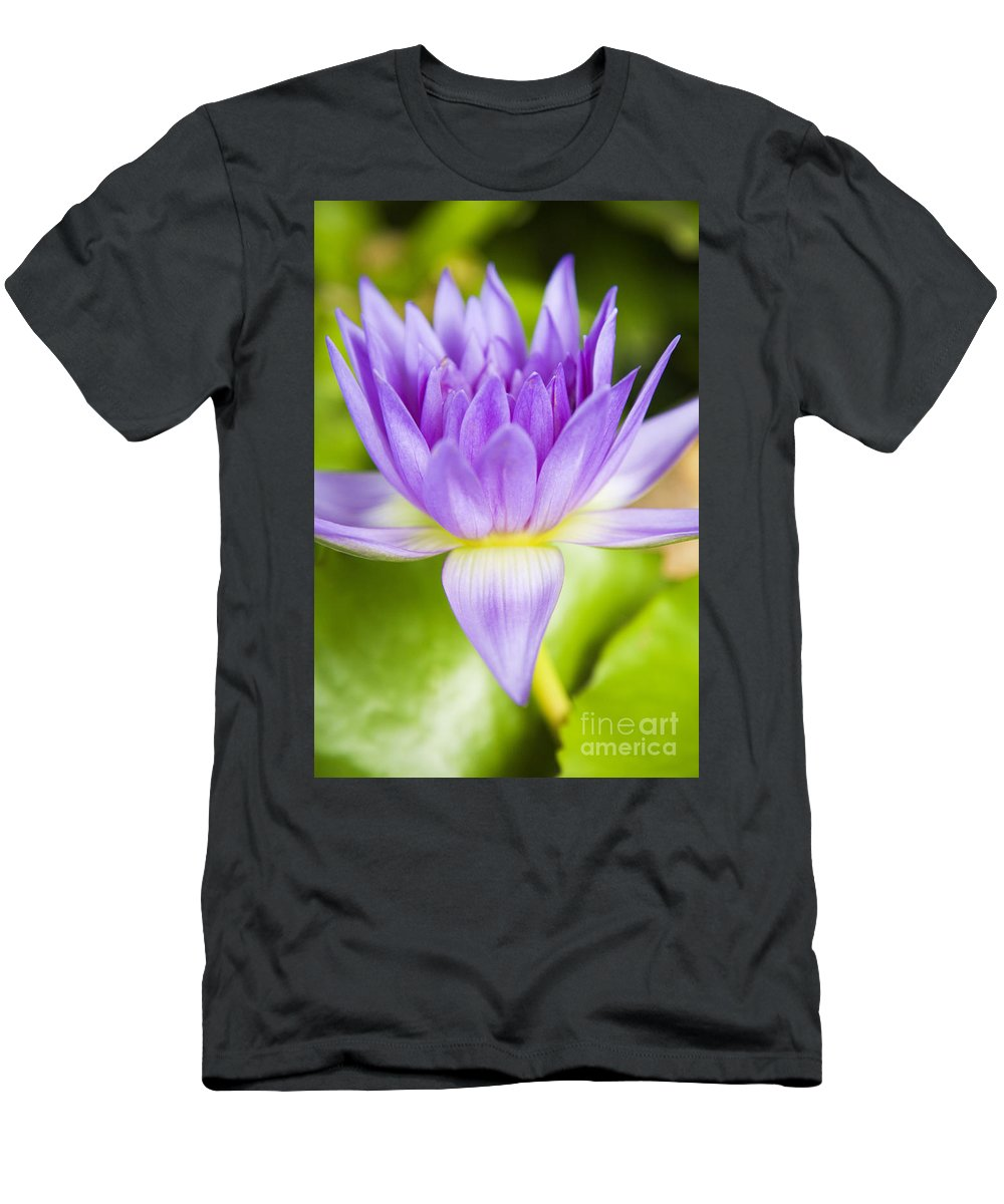 Afternoon Men's T-Shirt (Athletic Fit) featuring the photograph Purple Lotus Blossom by Dana Edmunds - Printscapes