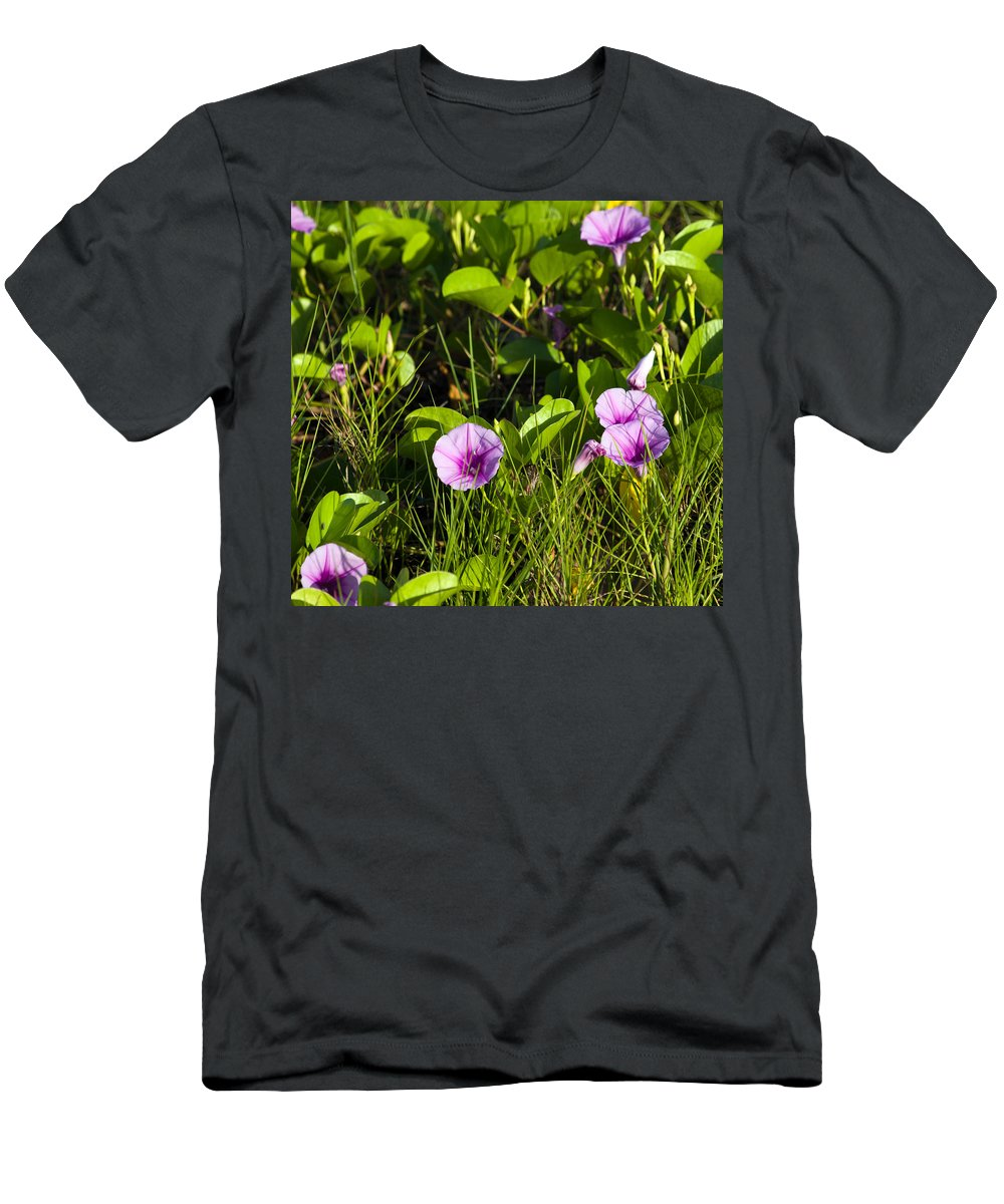 Railroad; Vine; Morning; Glory; Ipomoea; Pes-caprae; Pes; Caprae; Flower; Florida; Shore; Beach; Bea Men's T-Shirt (Athletic Fit) featuring the photograph Railroad Vine by Allan Hughes