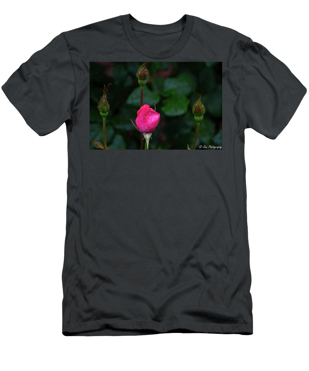 Buds Men's T-Shirt (Athletic Fit) featuring the photograph Rain Covered Pink Rose And Buds by Soni Macy