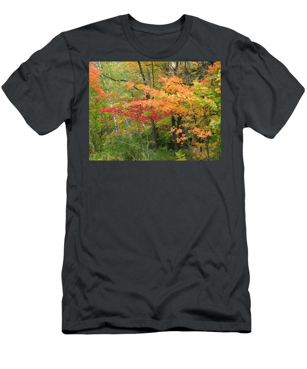 Fall Men's T-Shirt (Athletic Fit) featuring the photograph Rainbow by Kelly Mezzapelle