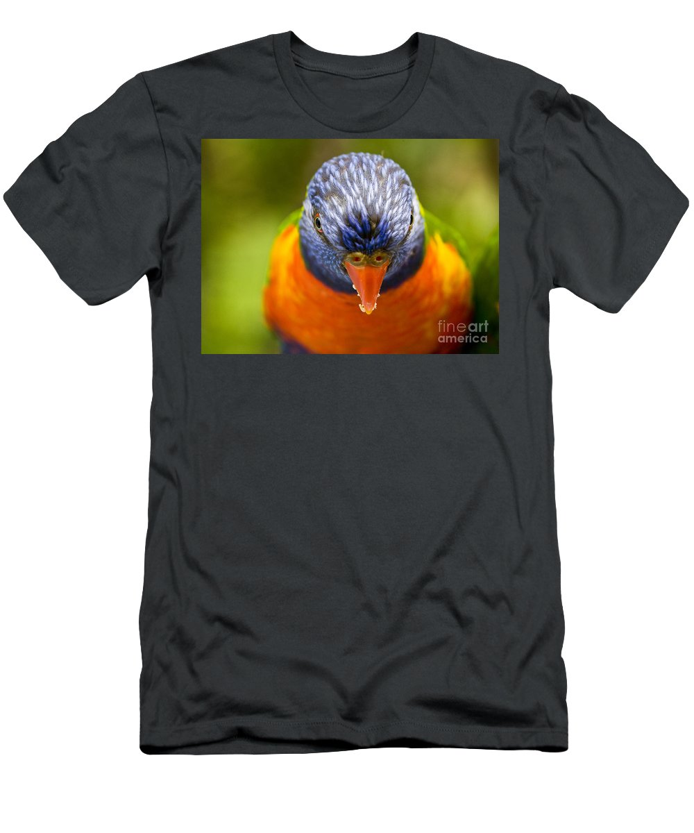 Rainbow Lorikeet Men's T-Shirt (Athletic Fit) featuring the photograph Rainbow Lorikeet by Sheila Smart Fine Art Photography