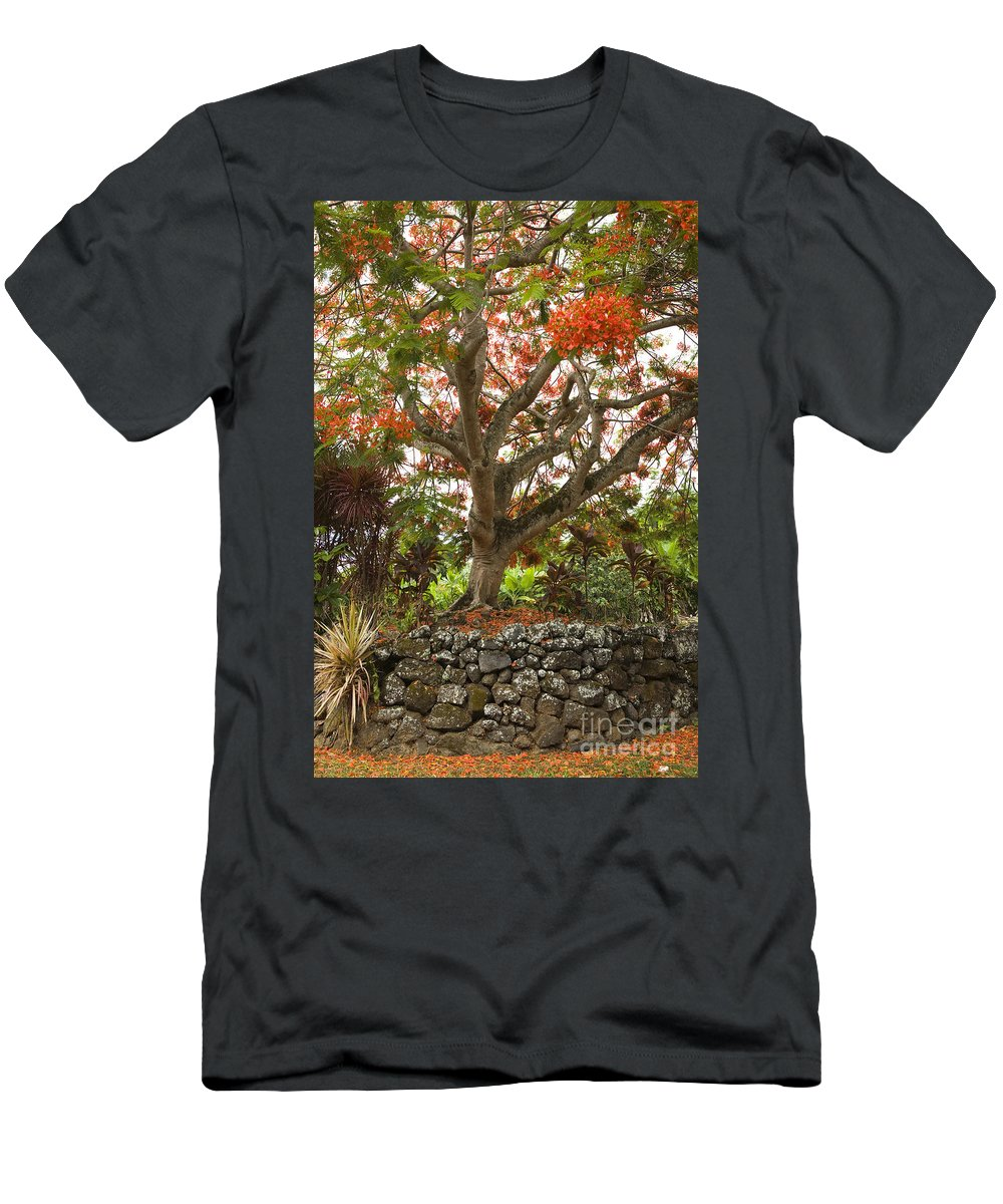 Beautiful Men's T-Shirt (Athletic Fit) featuring the photograph Rainbow Shower Tree by Dana Edmunds - Printscapes