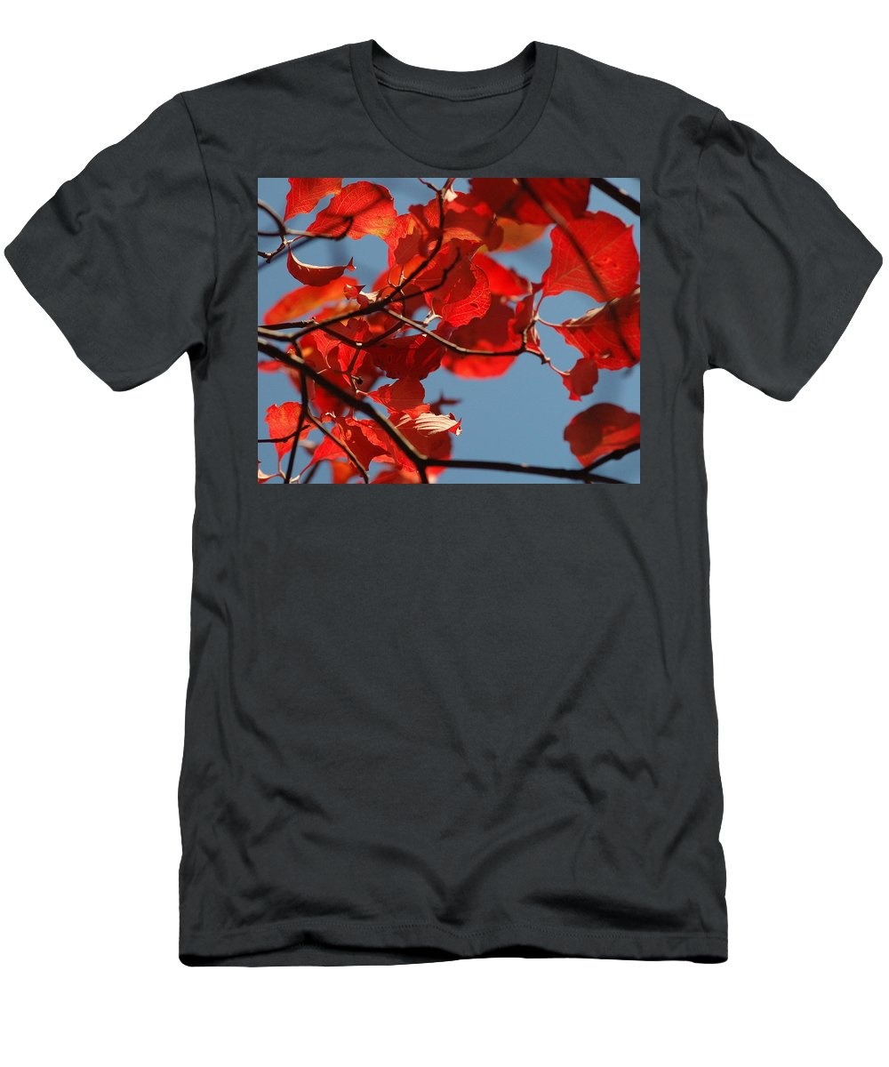 Falls Leaves Men's T-Shirt (Athletic Fit) featuring the photograph Red Brown And Blue by Trish Hale