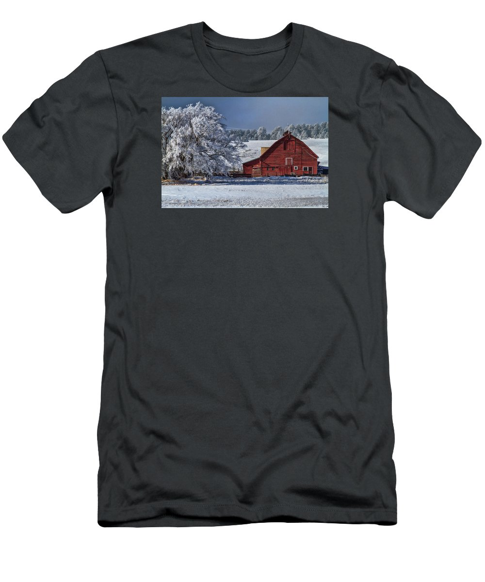 Winter T-Shirt featuring the photograph Red On White by Alana Thrower
