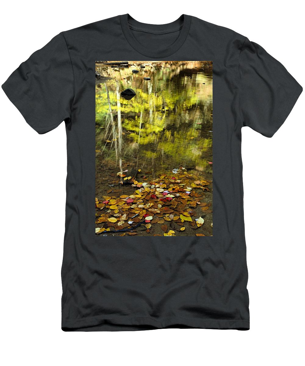 Old Man Cave State Park Men's T-Shirt (Athletic Fit) featuring the photograph Reflections Of Autumn by Larry Ricker