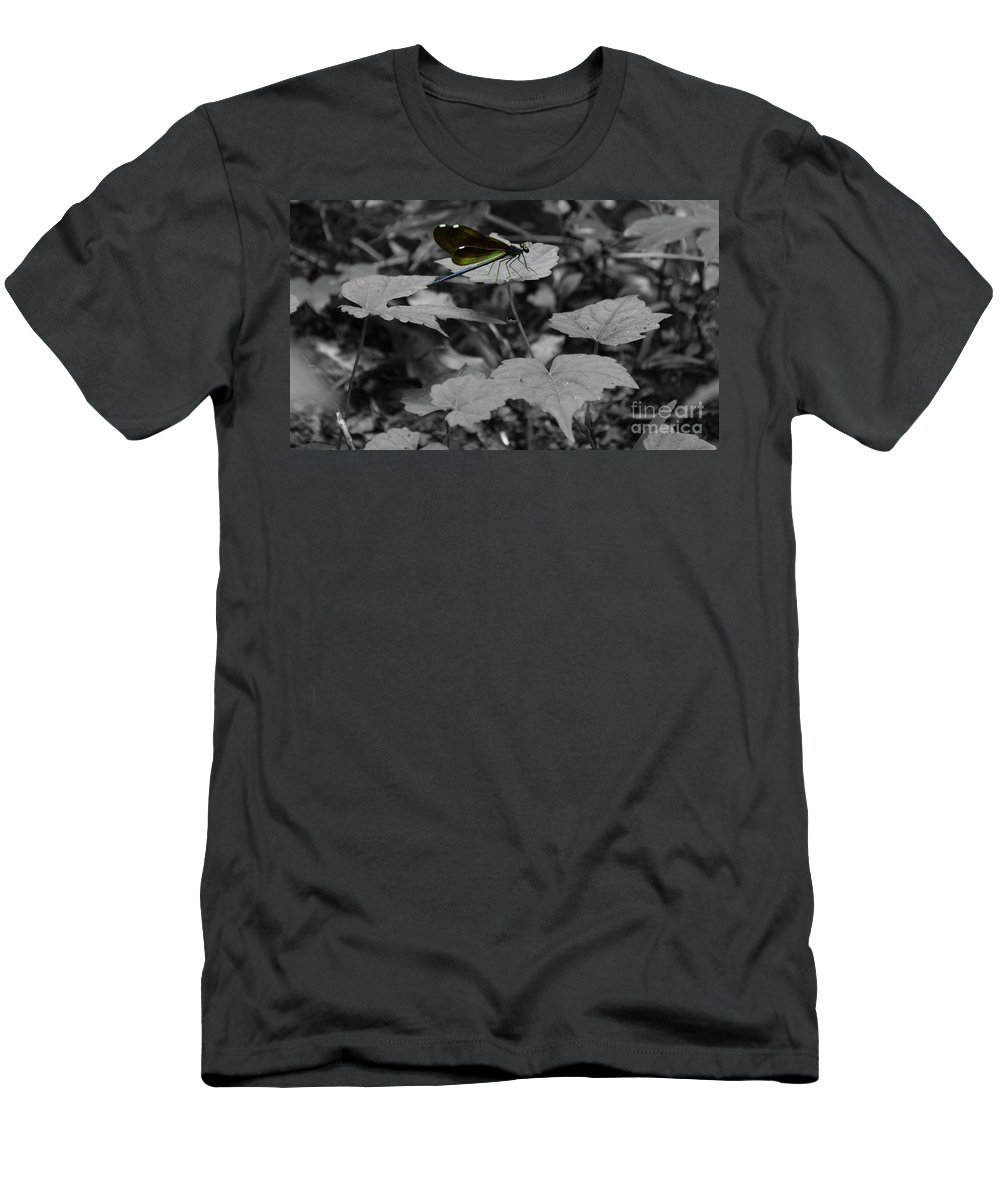 Insects Men's T-Shirt (Athletic Fit) featuring the photograph Resting Dragonfly by Maggie Cersosimo