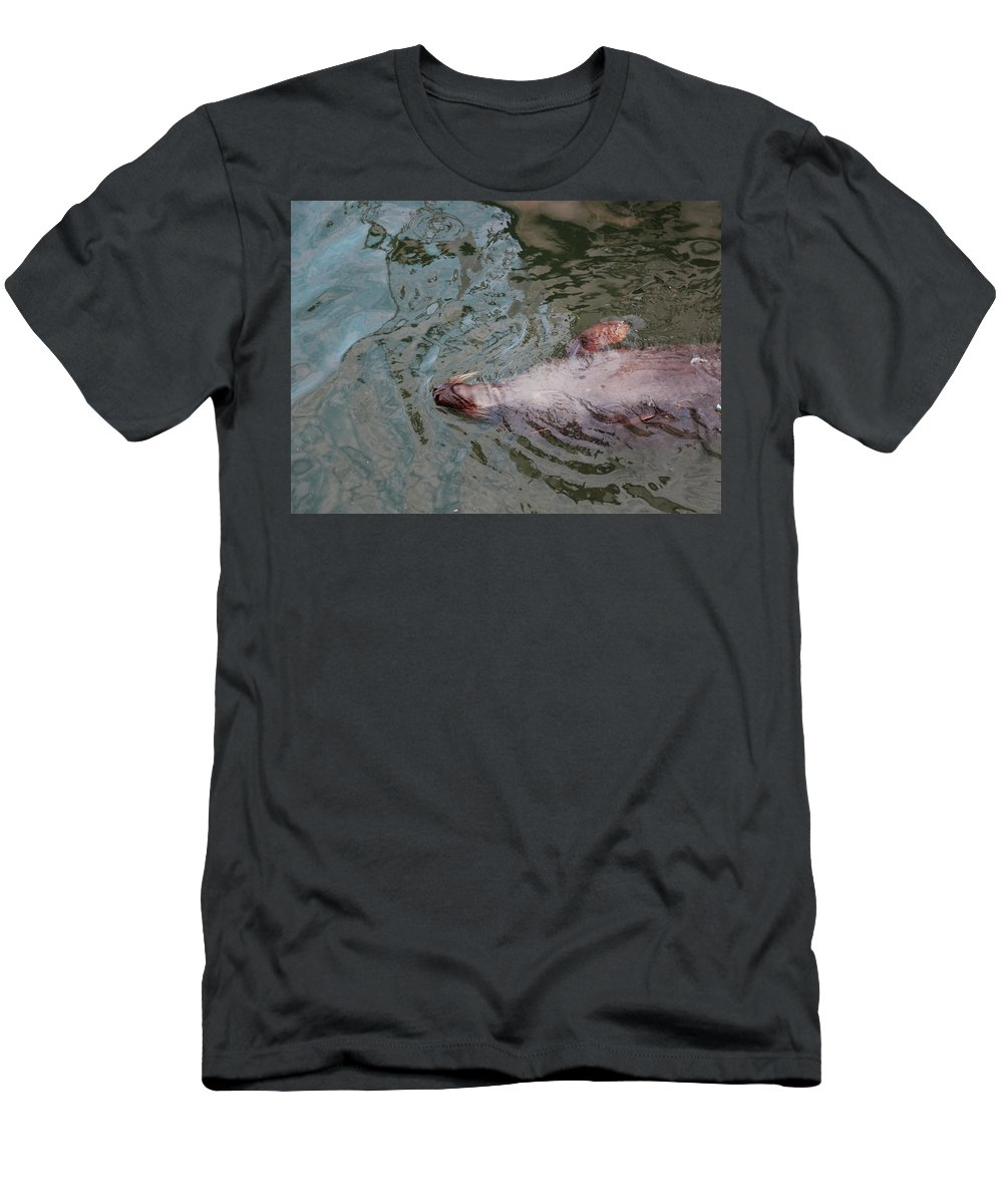 Resting Seal Men's T-Shirt (Athletic Fit) featuring the photograph Resting Seal by Imagery-at- Work