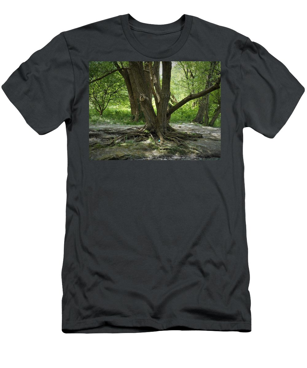 Woods Men's T-Shirt (Athletic Fit) featuring the photograph Roots Above by Michael Dorr-benham