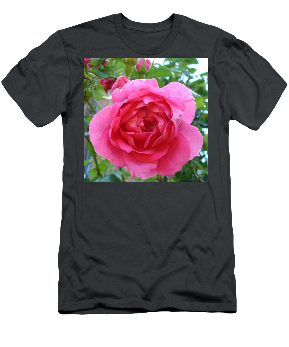 Rose Men's T-Shirt (Athletic Fit) featuring the photograph Rosa Zephrine by Susan Baker
