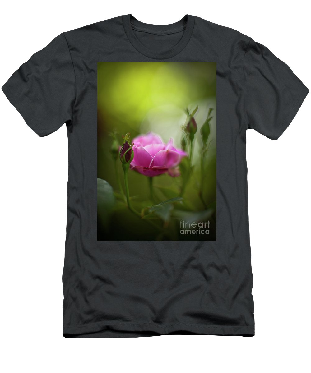 Rose Men's T-Shirt (Athletic Fit) featuring the photograph Rose Sentinel by Mike Reid