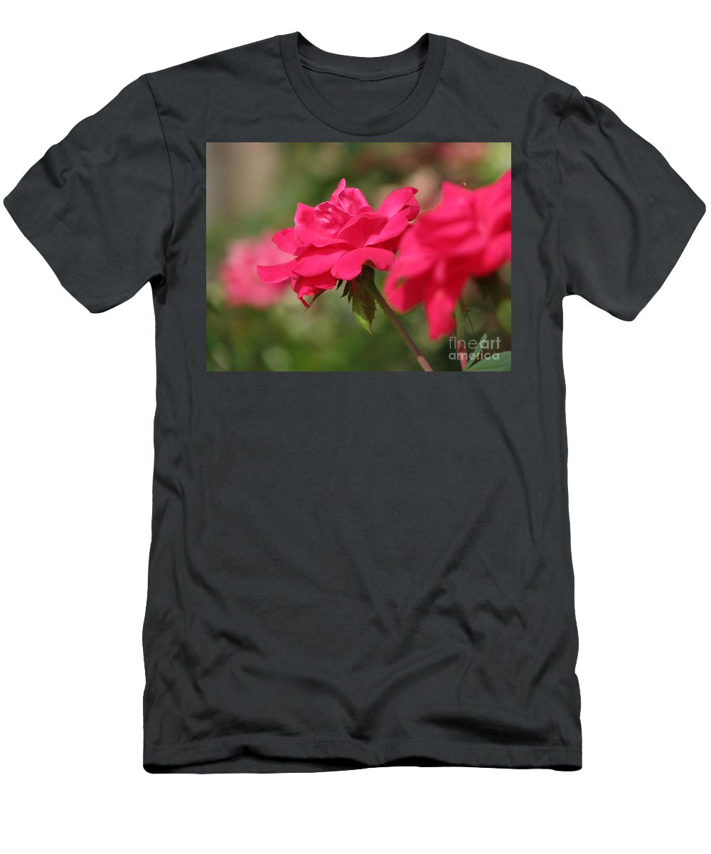 Rose Men's T-Shirt (Athletic Fit) featuring the photograph Roses by Amanda Barcon