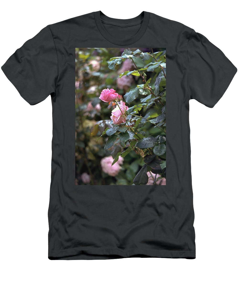 Roses Men's T-Shirt (Athletic Fit) featuring the photograph Roses by Flavia Westerwelle