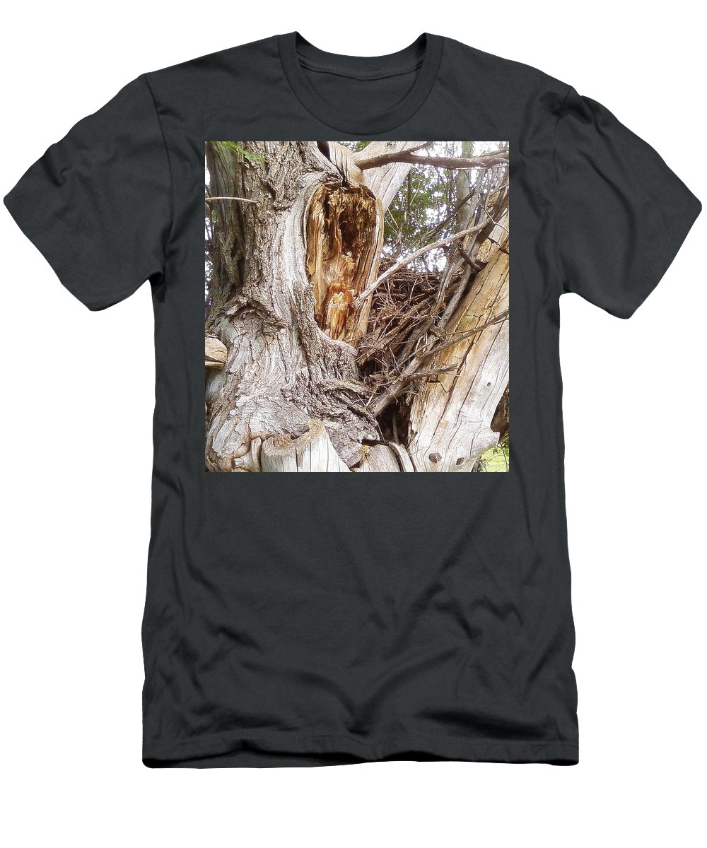 Tree Limbs Bark Men's T-Shirt (Athletic Fit) featuring the photograph Rough Tree by Cindy New