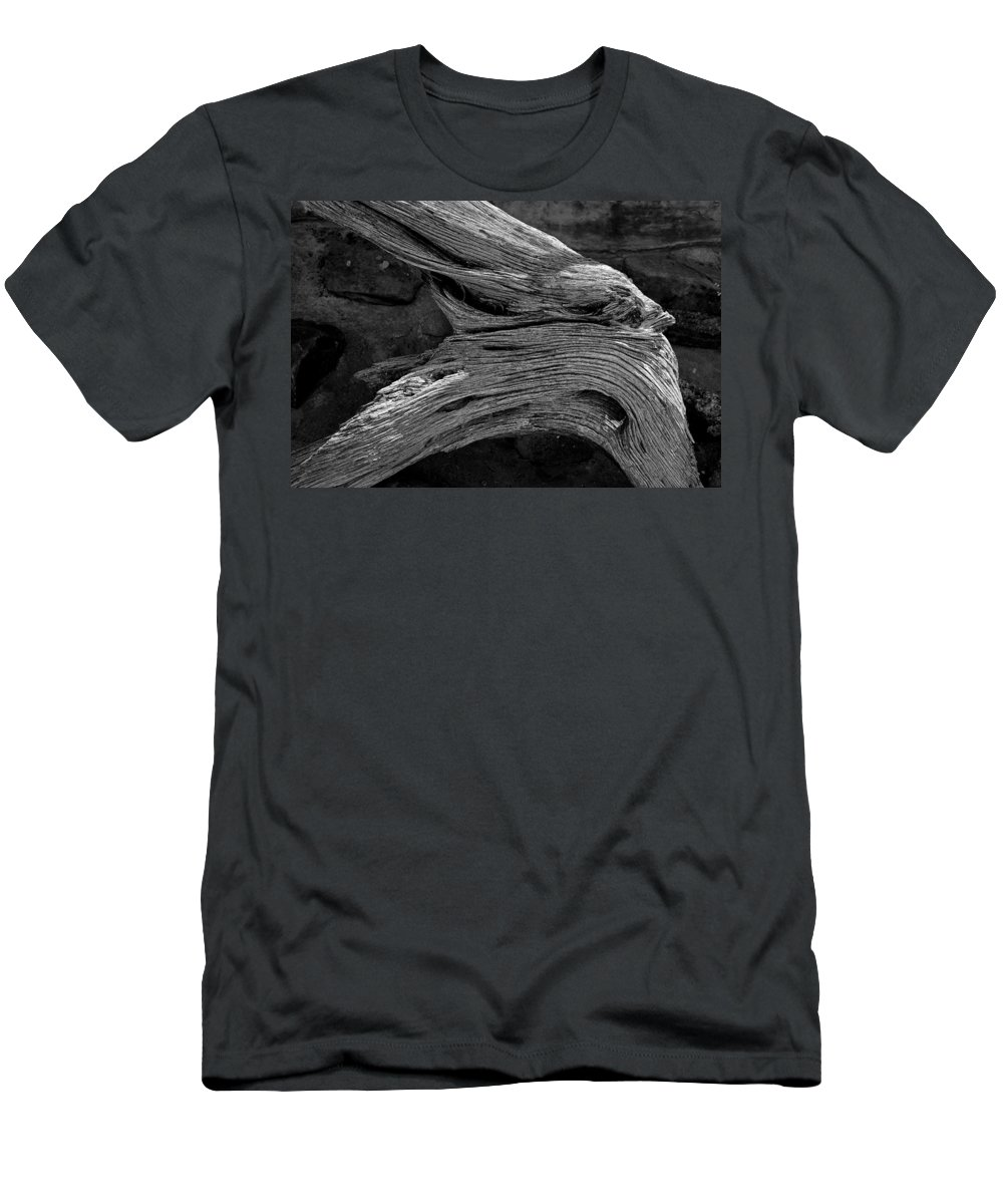 Royal Men's T-Shirt (Athletic Fit) featuring the photograph Royal Deadwood Study 2 by Robert Meyers-Lussier