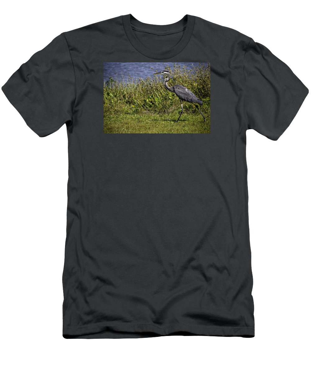 Bird Men's T-Shirt (Athletic Fit) featuring the photograph Running Away by Leticia Latocki