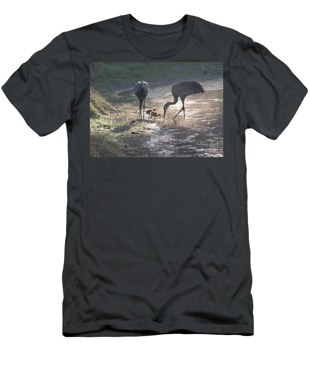 Sandhill Chick Men's T-Shirt (Athletic Fit) featuring the photograph Sandhill Crane Family In Morning Sunshine by Carol Groenen